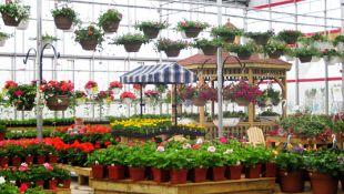 ogrodniczy1